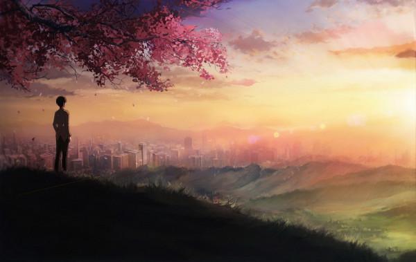 anime-cherry-blossum-manga-sunset-veiw-Favim.com-281155