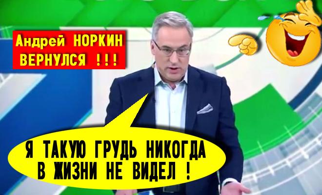 Норкин Андрей Анекдоты Видео Бесплатно