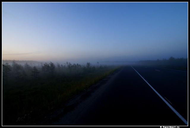 Все дороги ведут в туман...