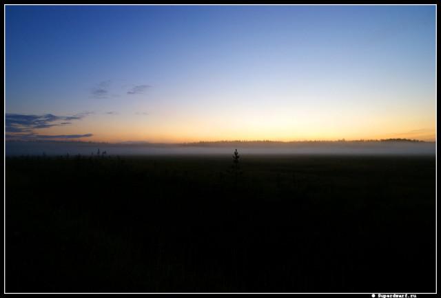 Рассвет  в тумане
