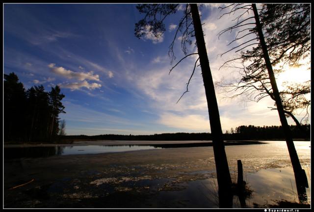 Рощино. Тихая гладь озера.