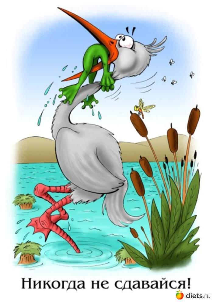 рисунок пеликан с лягушкой в пасти удобный мощный редактор