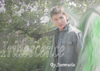 Iridescence by Surevesta
