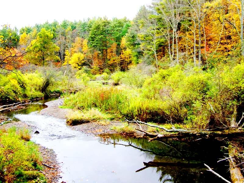 river2