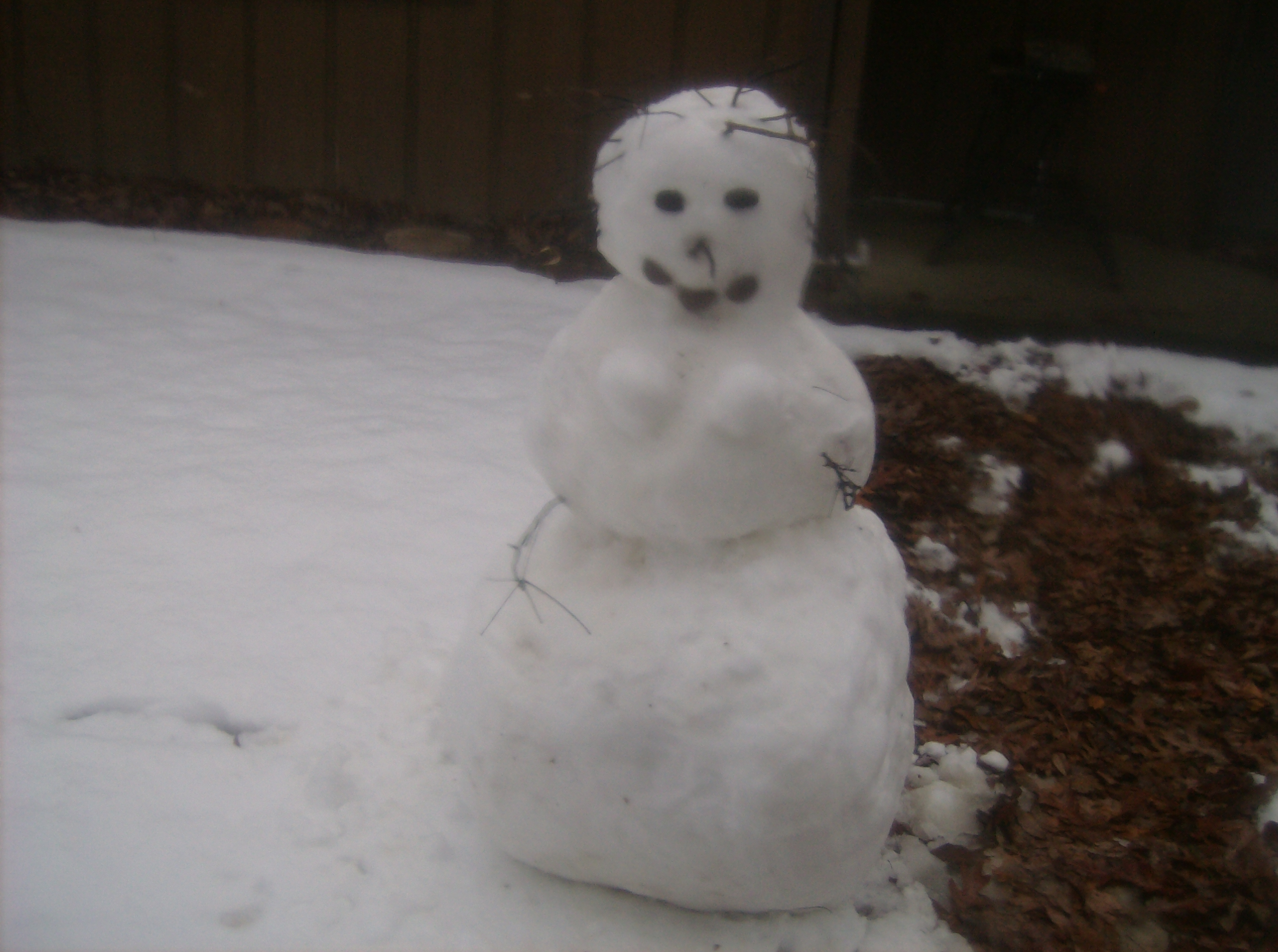 The snow woman I built today