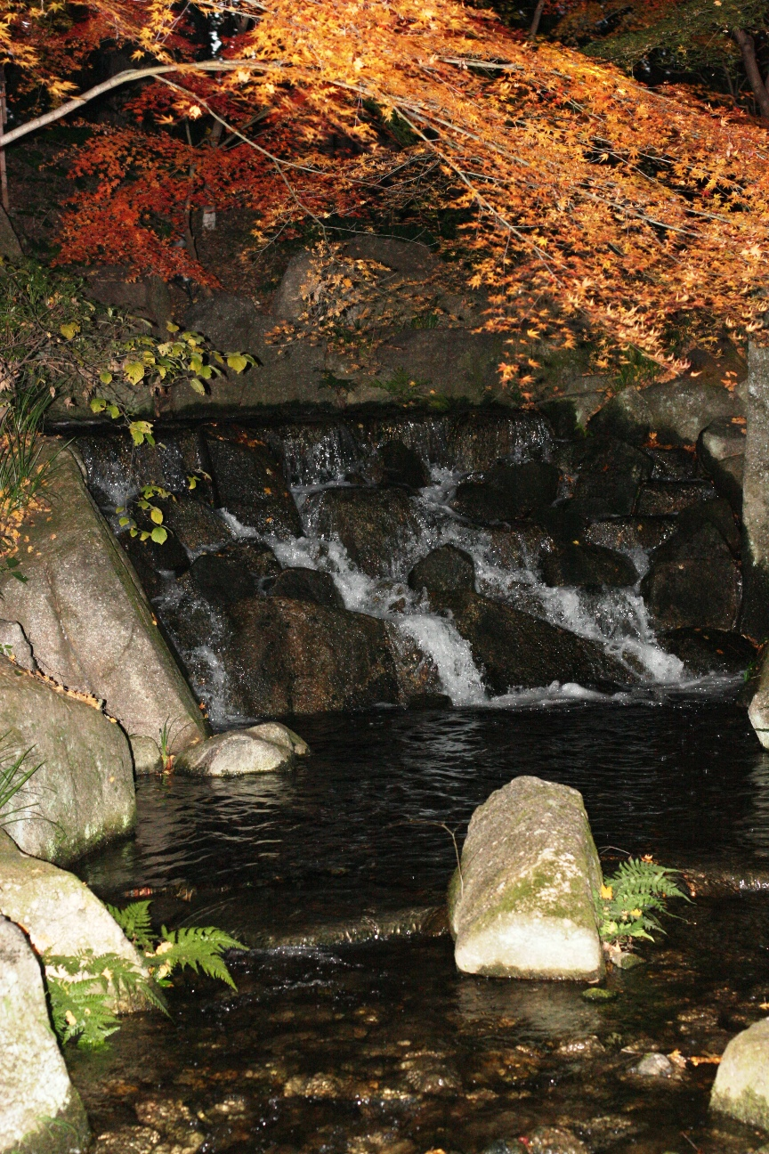 Tokugawa_garden