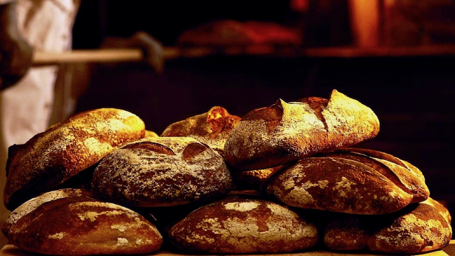bread_bakery_oven_poppy_87834_2560x1080.jpg