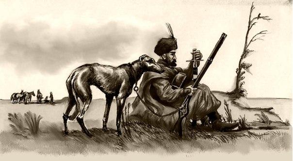 борзая-малая