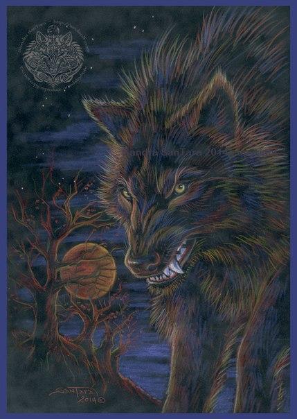Волк-кельт
