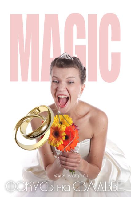 Фокусник на свадьбу для развлечения гостей - Игорь Онищенко www.sveigo.ru
