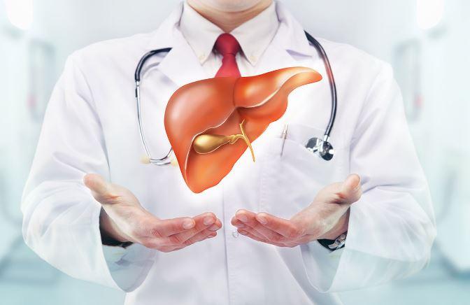 Лецитин: польза и вред - Здоровый образ жизни