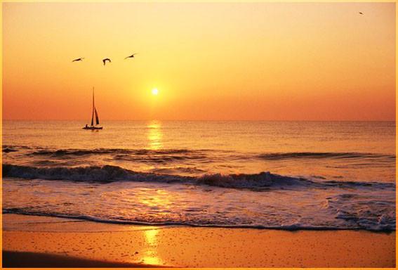 Солнце и океан