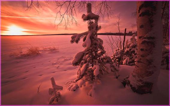 Закат зимний