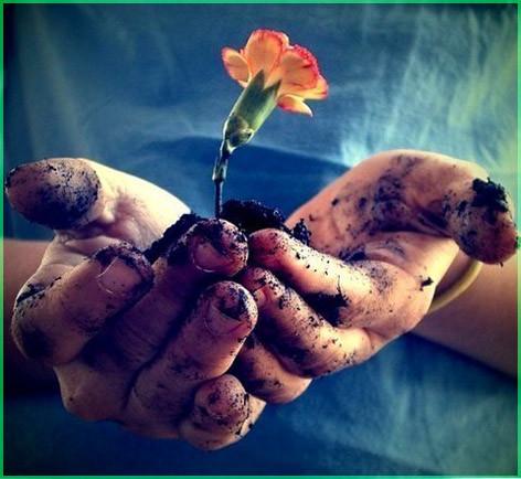 Цветочек в ладони
