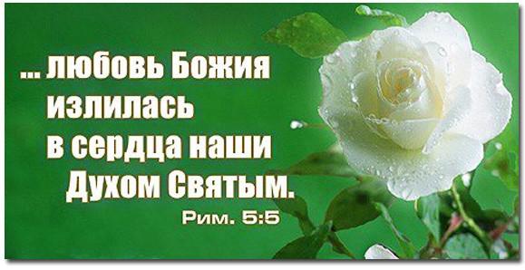 Любовь Божия