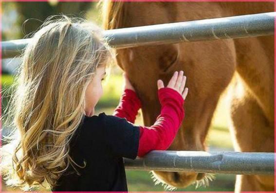 С лошадкой 7