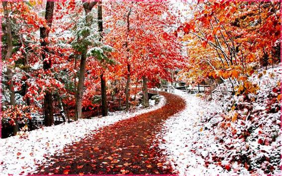 Первый снег 3