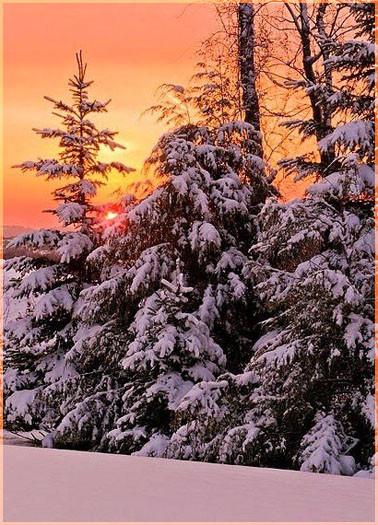 Зимний закат 1