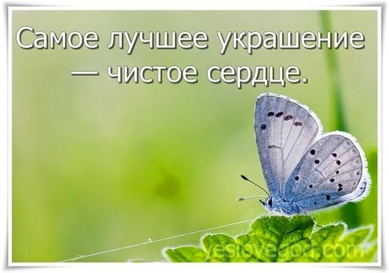 http://ic.pics.livejournal.com/svetlyachok_vtk/60138654/195491/195491_900.jpg