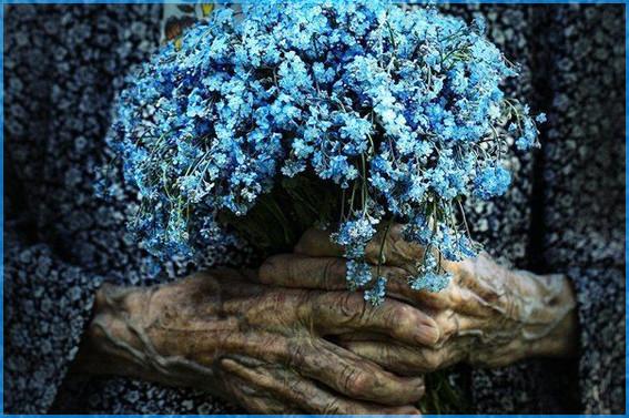 Руки и цветы