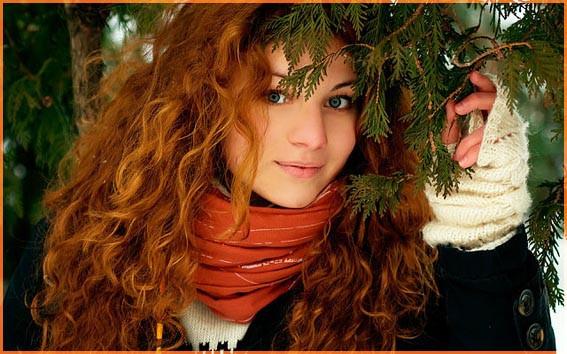 Под елкой