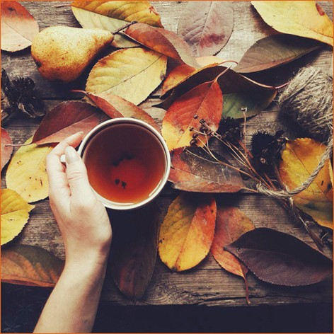 Скоро осень