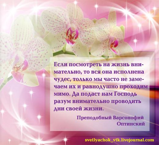 Прп Варсонофий Оптинский