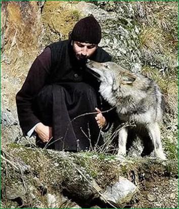 С волчицей