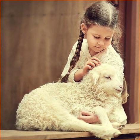 С овечкой