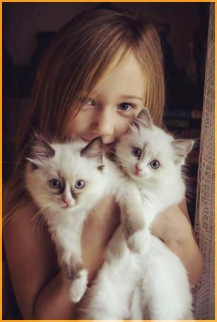 С котятами 1