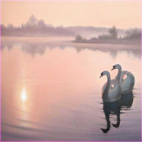 Два лебедя 4