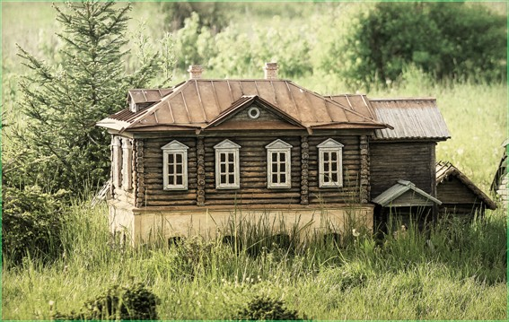 Дом деда Василия Lidiya Kipritch
