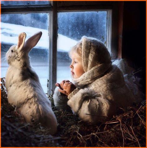 С кроликом 6