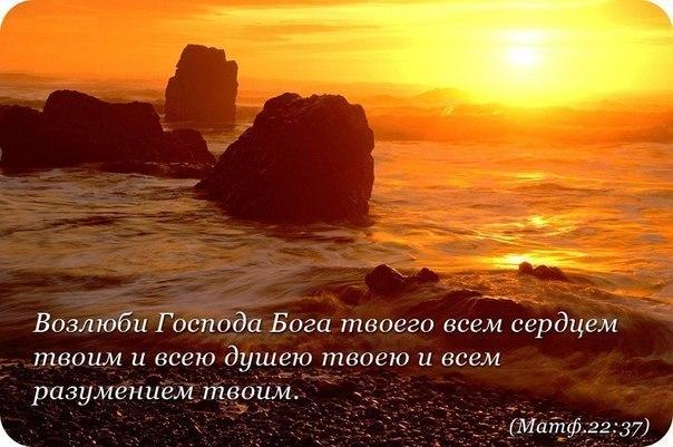 Возлюби Господа