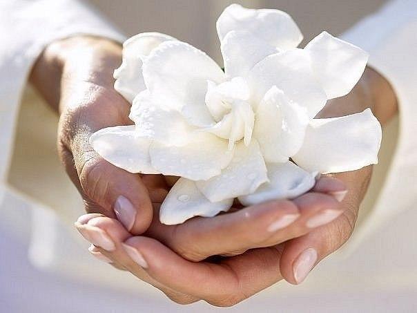 Цветок в ладони