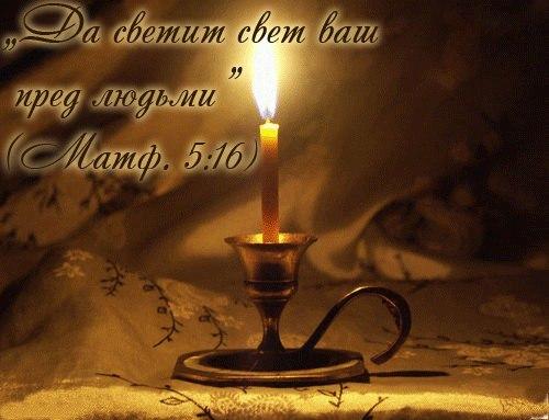Светите любите