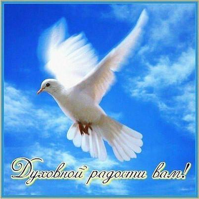 Духовной радости вам