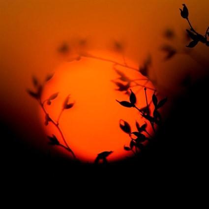 Солнце закатное