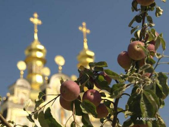 Купола и ветка яблони
