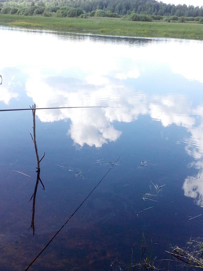 рыбалка река тесовая