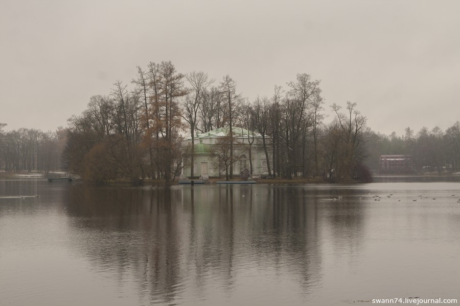 Екатерининский парк, ноябрь 2015 года
