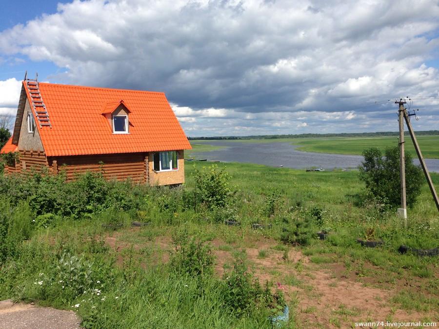 Деревня Чавницы, Новгородская область