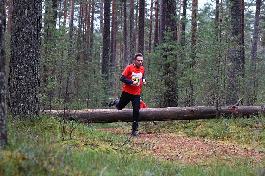 Rautu Trail 2016