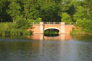 Мост в Баболовском парке. Июль.