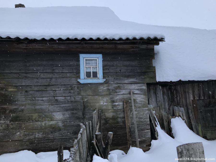Остров Войцы, озеро Ильмень