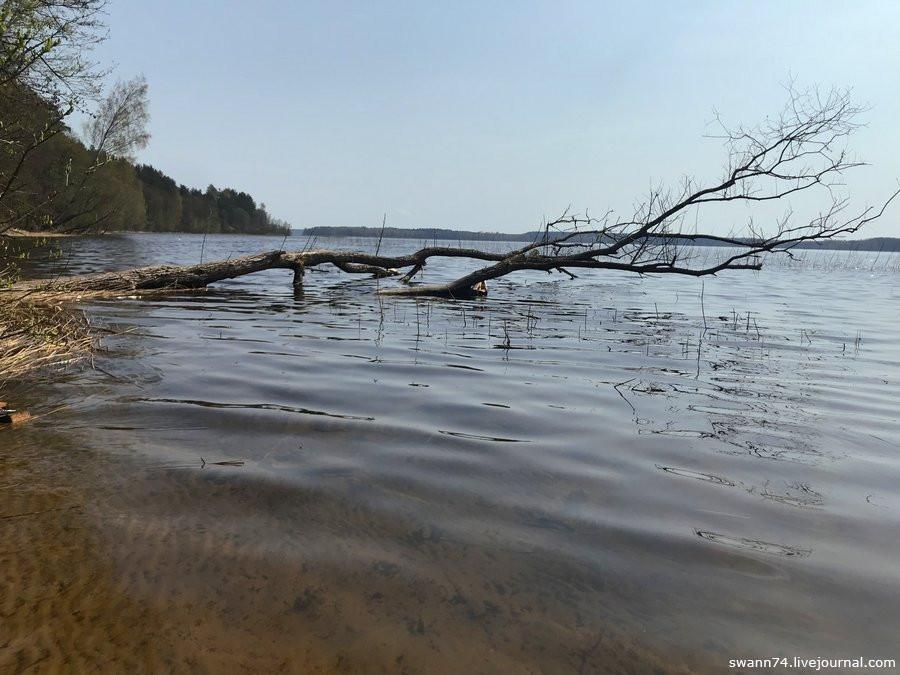 Озеро Струсто, Белоруссия, май 2018