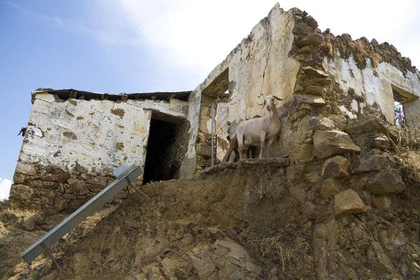 Заброшенная деревня Алевка на границе Южного и Северного Кипра.