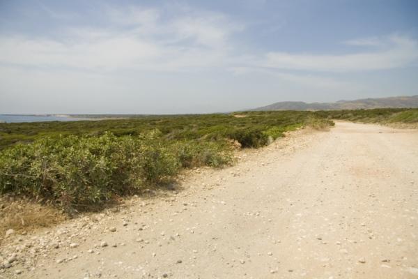 Дорога на полуостров Акамас, Кипр.