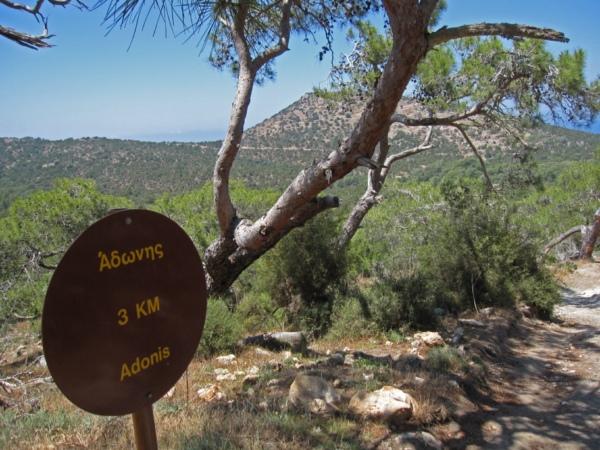 Кипр, тропа Афродиты.