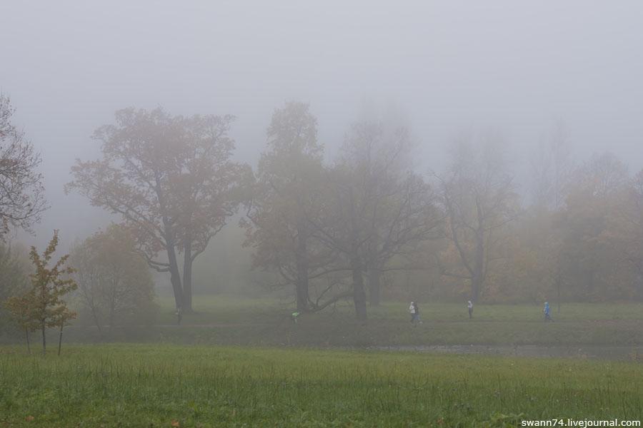 Александровский парк, туман, октябрь 2012 год.